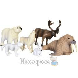 """Обучающий игровой набор с QR-картой Wenno """"Животные Арктики"""" WAC1701"""