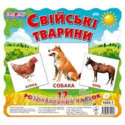 Карточки мини Домашние животные