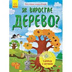 """Моя первая энциклопедия - Как вырастает дерево? """"Ранок"""" (укр)"""