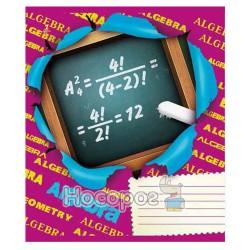 Тетрадь 1 вересня 48 л. клетка Предметка (Алгебра)