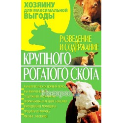 Розведення і утримання великої рогатої худоби
