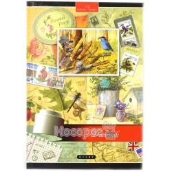 Щоденник шкільний Mandarin Д-В5-48-Тв