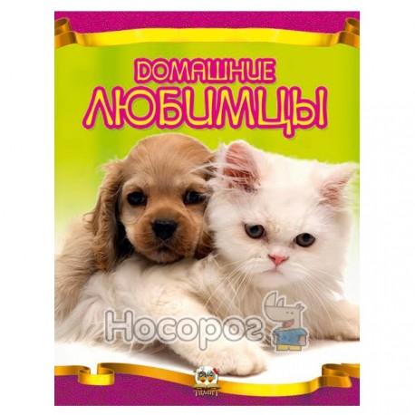 Энциклопедия - Домашние любимцы (укр.)