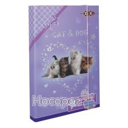 Папка для труда А4 ZB.14903 CAT&DOG