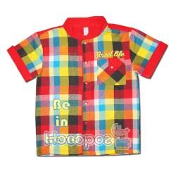 Сорочка ТРЕНД для мальчиков
