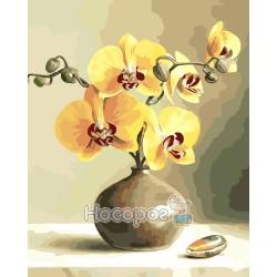 Картина по номерам Орхидеи AS0019
