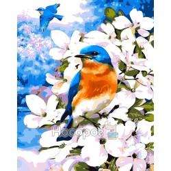 Картина по номерам Птичка в цветах AS0052