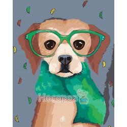 Картина по номерам Пес в очках AS0071