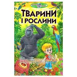 Познаем мир вместе - Животные и растения (укр.)