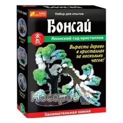 """Японський сад кристалів """"Бонсай"""" 0349"""