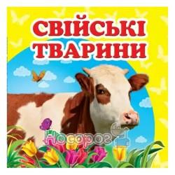 """Окружающий мир - Домашние животные """"Пегас"""" (укр.)"""