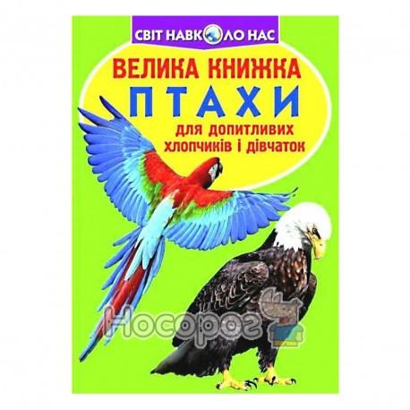 Велика книжка Птахи