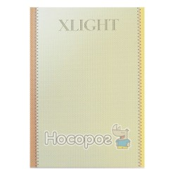 Деловой дневник А5 Xlight - №2