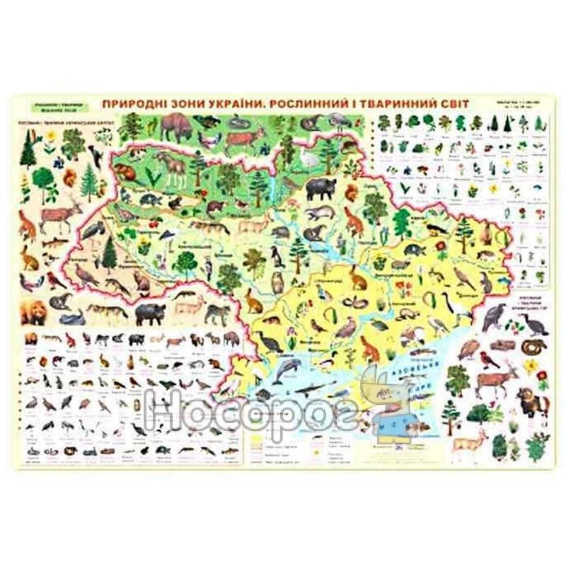 """Фото Плакат - Природные зоны Украины (растительный и животный мир) """"ПиП"""" (укр.)"""