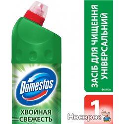 Универсальное средство Domestos Хвойная Свежесть 24 часа 1 л (8717163094891)