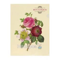"Папка Кутик А4 L6193 ""Botanique"" 490813"