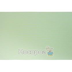 """Папір з малюнком """"Лінійка"""" двосторонній, Світло-зелений, 21*31см, 200г/м2, 204774636, Heyda"""
