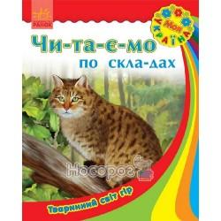 """Моя Украина - Читаем по слогам: Животный мир гор """"Ранок"""" (укр.)"""