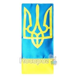 Прапор П6Гт