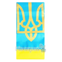 Прапор П6Т