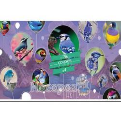 Альбом для рисования Подолье, 20 листов
