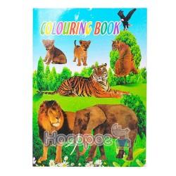 Раскраска Coloring book 828