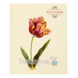Папка з чотирма кільцями Botanique А4 L6190