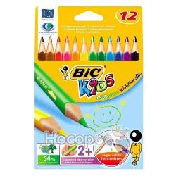 Карандаши цветные Бик Эволюшин кидс 12 цв. 829735