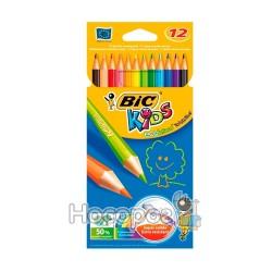 Карандаши цветные Бик Эволюшин кидс 12 цв. 829029