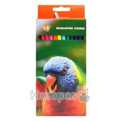 """Олівці кольорові Умка """"Папуга"""" 12 кольорів 01152280"""