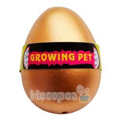 Вырастайка яйца курицы №8097