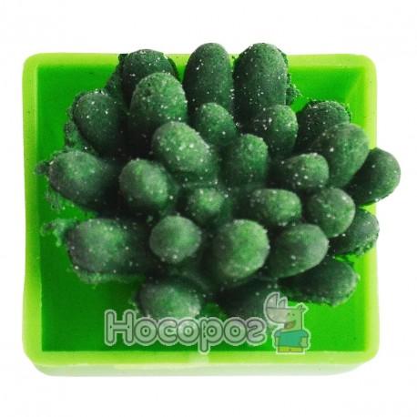Вырастайка вырасти зеленый кактус №8081