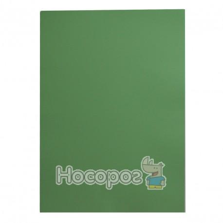Фото Бумага цветная PROFI А4 / 80г Light Green №190