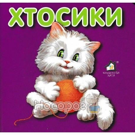 """Хтосикы - Кот """"Книжный дом"""" (укр.)"""