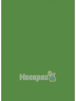 Фоаміран 8972 флексика 20*30см, 2мм., 10 арк. Зелений