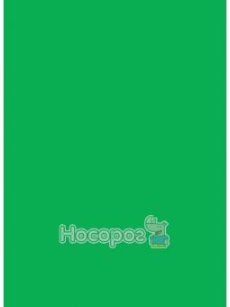 Фоаміран 7747 флексика, 1мм, 20 арк Зелений