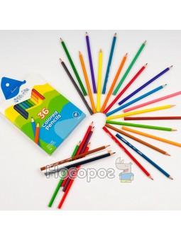 Олівці кольорові Marco 1100-36CB Colorite