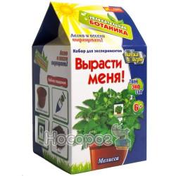 """0366 Набор """"Увлекательная ботаника """"Мелисса"""""""