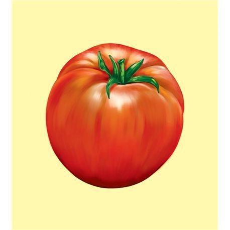 Фото Овощи и фрукты. Словарик в картинках