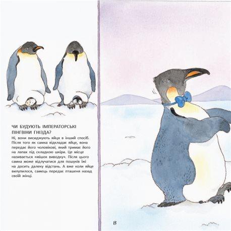 Фото Історії про тварин. Пінгвіненя Боб