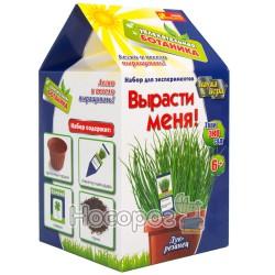 """0368 Набор """"Увлекательная ботаника """"Лук-резанец"""""""
