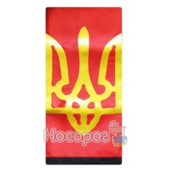 Прапор П6 ГТБ УПА