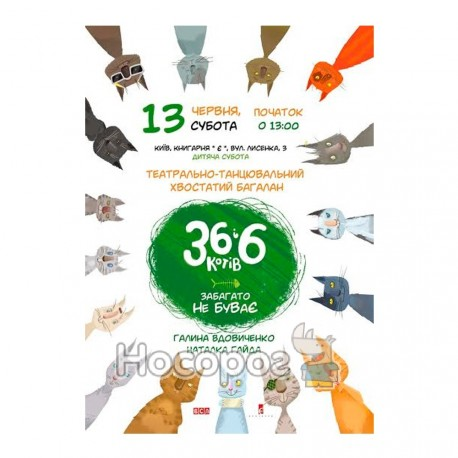 Вдовиченко Г. 366 котів