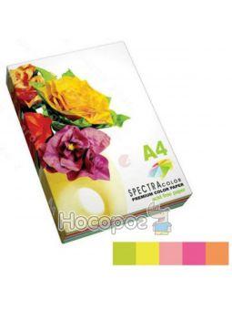 Бумага офисная цветная SPECTRA COLOR- (неон) IT 82 100л.