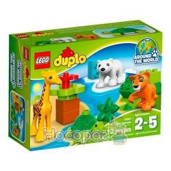 """Конструктор LEGO """"Детеныши животных"""" 10801"""
