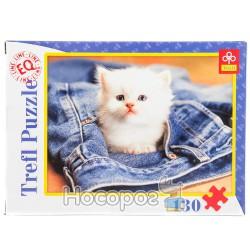 """82008 """"130 ел."""" - Котёнок в джинсах/Фото"""