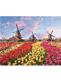 Картина по номерам Красочные тюльпаны Голландии КНО2224