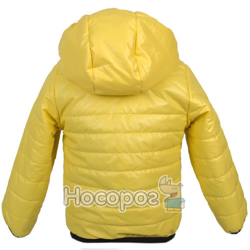 ceab5b5f0fba52 Куртка спорт. маленькая хлопчик/дівчинка купити в Києві, доставка по ...