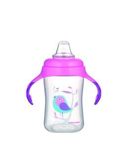 Canpol babies Кружка тренировочная с силиконовым носиком 300 мл BIRDS [56/519]