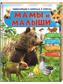 Мамы и малыши (Медведь). Энциклопедия в вопросах и ответах [9789669472625]